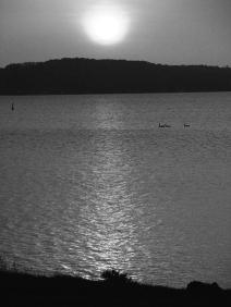 22. BW - Sunrise, Centennial Beach - Barrie, Ontario, Canada July 2014. (SM CADMAN)