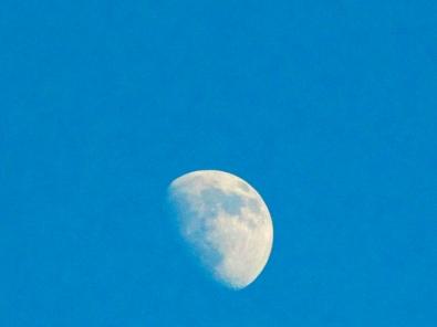33. C - Half Moon - Innisfil, Ontario, Canada July 2014. (SM CADMAN)