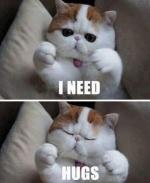 snoopy-cat-hugs